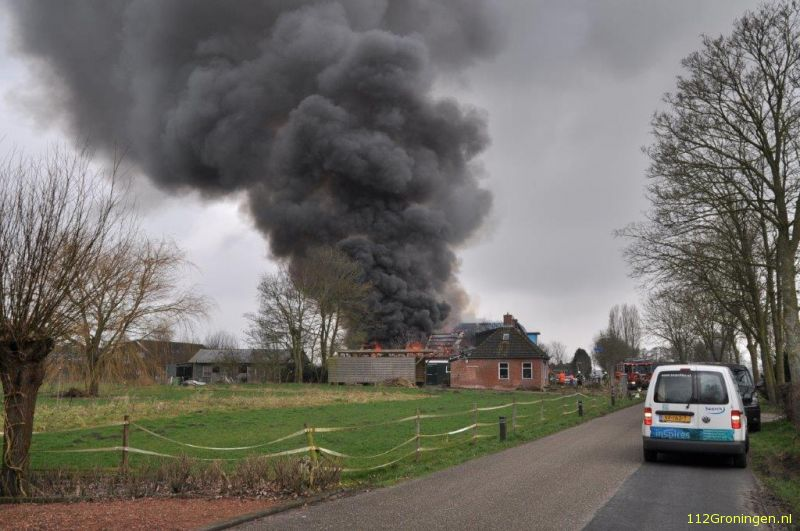 Kat en hond dood na grote brand in Pieterburen(Video)