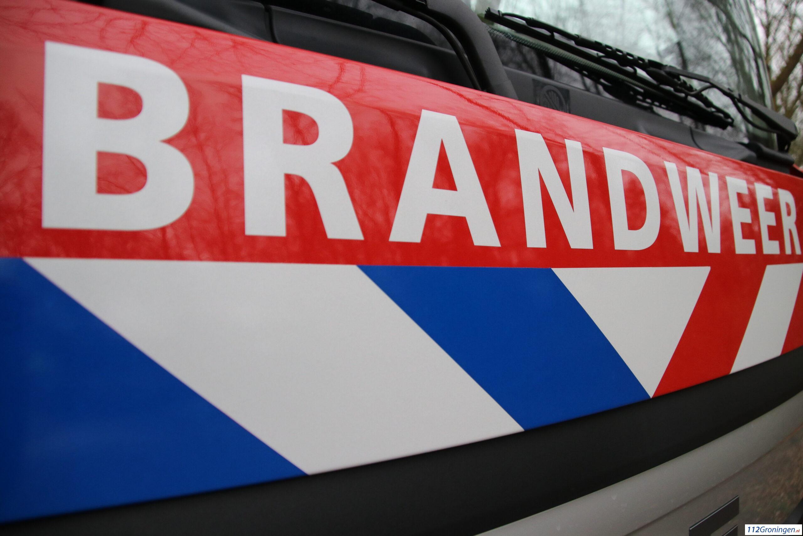Sappemeer: Motorkap van auto zwaar beschadigd na aanrijding met zwaan.